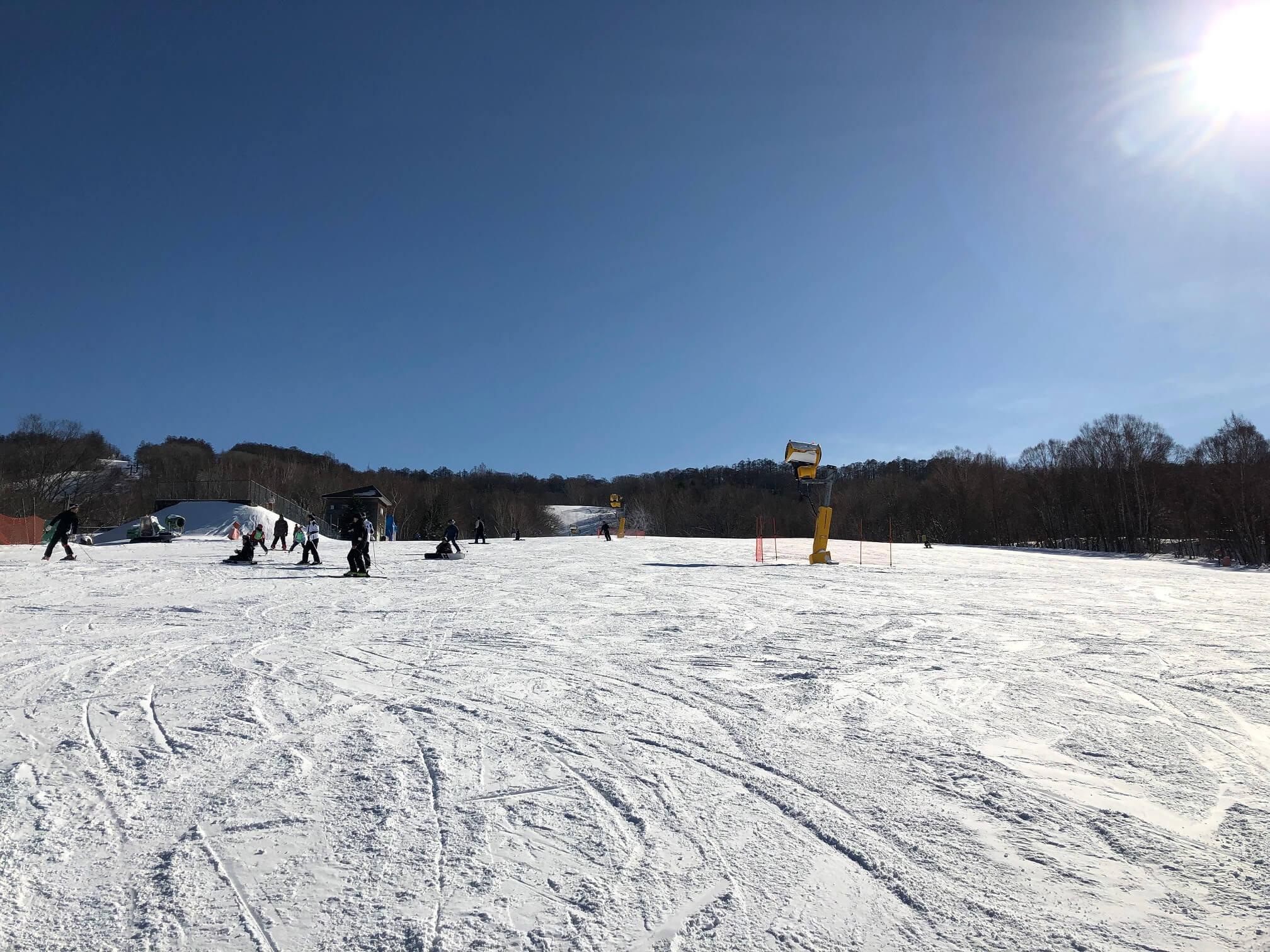スキー 場 エーデルワイス
